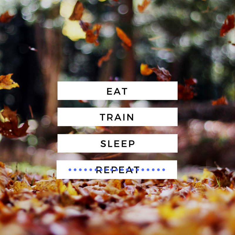 eat-train-sleep-repeat